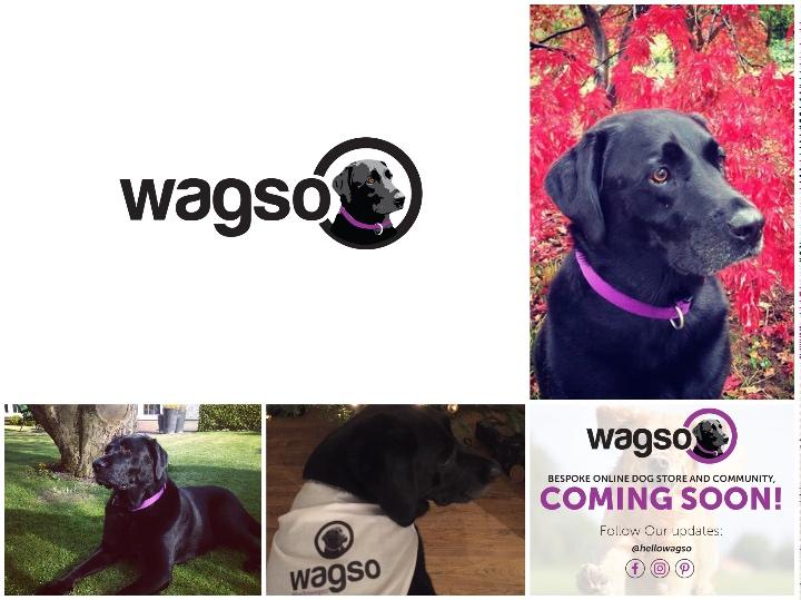 wagso
